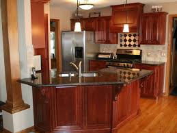 Home Built Kitchen Cabinets by Kitchen Cabinet Kitchen Cabinet Amazing Cheap Kitchen