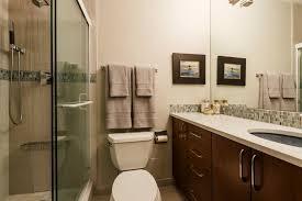 bathroom designs pictures 25 narrow bathroom designs decorating ideas design trends