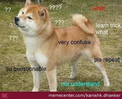 Confused Dog Meme - so confuse doge by kanishk dhanker meme center