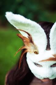 145 best rabbits images on pinterest animals bunnies and