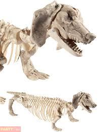Halloween Cat Skeleton Halloween Animal Skeleton Prop Party Decoration Rat Spider Cat Dog