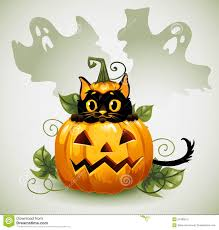 black cat in a halloween pumpkin and ghost royalty free stock