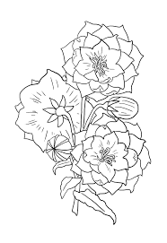 drawings of flowers to print flowers and leaves