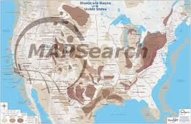 United States Map Poster by Shale Wall Map Series Mapsearch