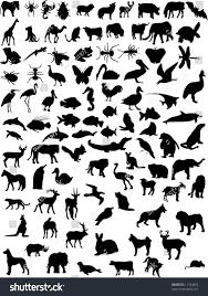 vector wild animal domestic shapes stock vector 11742853