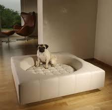 designer dog furniture cool 3602430da52a1a11f85ef6a4348258e0