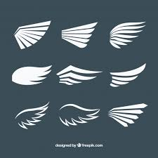 pack of white wings in flat design vector free