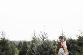 Washington Christmas Tree Farms - charming holiday engagement session gaver christmas tree farm