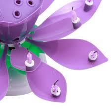 cool birthday candles magiclotus world s coolest birthday candles value gear online