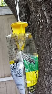 Homemade Fly Trap by Product Review Rescue Disposable Fly Trap U2013 Southern Made In The
