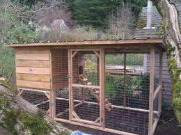 raising backyard chickens simple chicken coop coops and raising