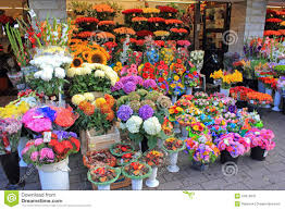 flowers shop flowers on display at flower shop stock photo 44913841 megapixl