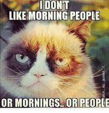 Morning People Meme - like morning people or mornings or people meme on me me