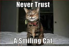 Smiling Cat Meme - never trust a smiling cat icanhascheezburger comぶ cats meme on me me