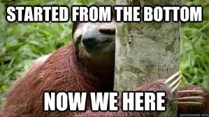 Sloth Meme Images - sloth meme dirty and funny sloth memes