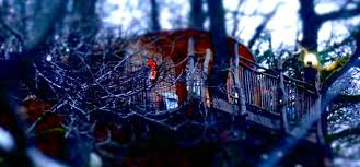 tree house experience stay in a treehouse treehouse holiday