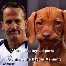 Memes De Los Broncos - memes de los broncos images
