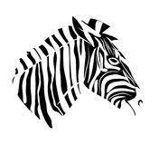 zebra tattoo stock vector image of illustration horse 26259965