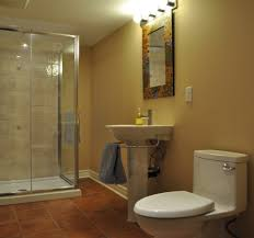 Bathroom Renovation Idea Basement Bathroom Traditional Basement Dc Metro By Ottawa