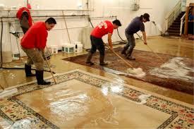 Persian Rug Cleaning by Nomads Services Oriental Rug Expertly Cleaned U0026repaire