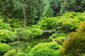 beautiful japanese zen garden stock photo picture and royalty