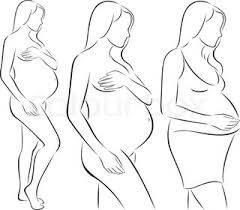 outline sketch of pregnant woman vector illustration stock