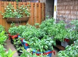 Gardening Ideas For Small Spaces Small Side Garden Ideas Building A House How We Planned Our