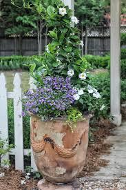 Gardening Tips For Summer - 2251 best for the garden images on pinterest flowers gardens