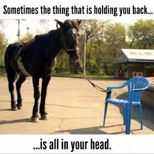 Horse Head Meme - it s all in your head imgur