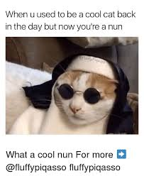 Cool Cat Meme - when u used to be a cool cat back in the day but now you re a nun