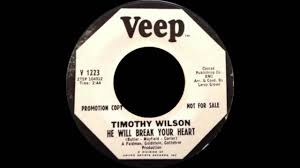 timothy wilson he will break your heart youtube