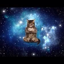 Meme Space - space cat blank template imgflip
