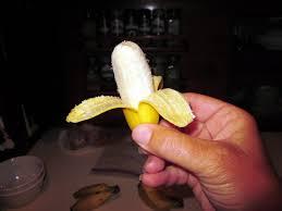 tiny banana tiny bananas are awesome album on imgur