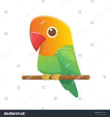 cartoon cockatiel cute cartoon lovebird parrot vector stock vector 659424193