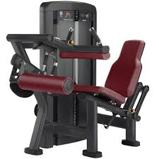 insignia series seated leg curl life fitness strength training