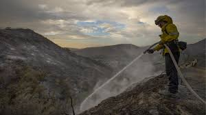 California Wildfire Animal Rescue by Three Homes Burned As Foothills Wildfire Grows To 5 800 Acres La