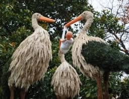 315 royalty free bird garden images peakpx