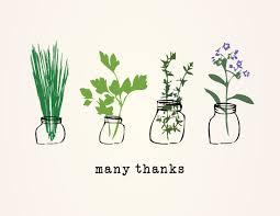 Thank You Card Designs Thank You Cards Thank You Herbs At Minted Com
