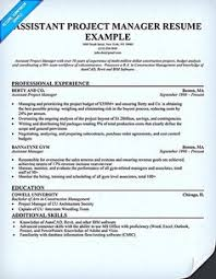Project Manager Resume Tell The Company Or Organization Entry Level Project Manager Resume Sles Project Manager Resume