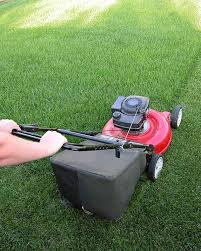 overseeding a key to beautiful lawns