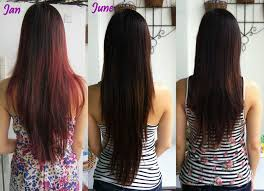 haircuts long v shaped layered haircut cut back view the hairstyle