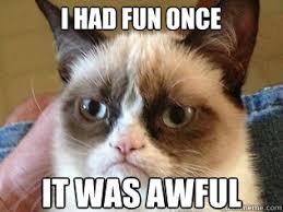 Grumpy Cat Meme I Had Fun Once - i had fun once it was awful tardar sauce grumpy cat quickmeme