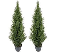 two pre potted 4 artificial cedar topiary outdoor