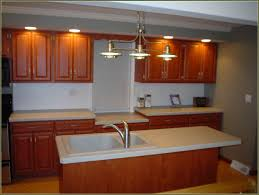 Kitchen Cabinets Refinishing Kits Rustoleum Bathtub Refinishing Kit Home Depot Home Design Ideas