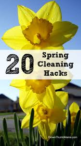 spring clean 20 amazing spring cleaning hacks brown thumb mama