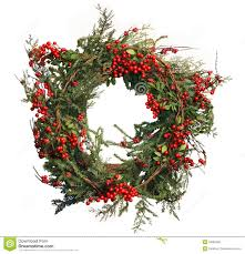 holly berry and pine christmas wreath stock photography image