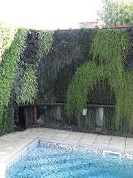 Diy Vertical Wall Garden Diy Greenwalls