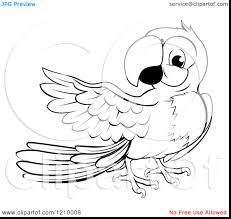 outstanding pirate parrot coloring page with parrot coloring pages