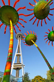 seattle flowers solar flower power in seattle cost of solar cost of solar