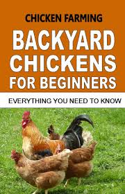 buy backyard chickens guide for beginners easy steps to starting